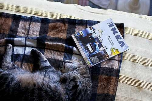 neue ikea m bel der neue katalog ist da. Black Bedroom Furniture Sets. Home Design Ideas